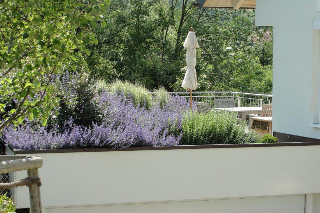 Dachgarten auf Doppelgarage