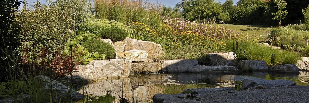 Naturgarten mit Teich